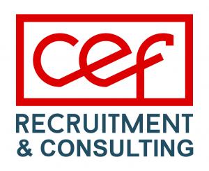 Logo_Consult